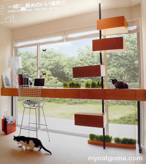 Cat House photos