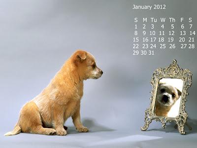 calendar ianuarie 2012