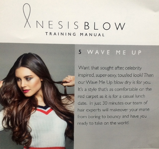 anesis blow dry bar
