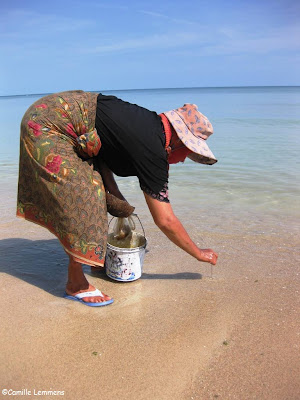 Catching fish bait on Thong Krut beach in Ban Saket