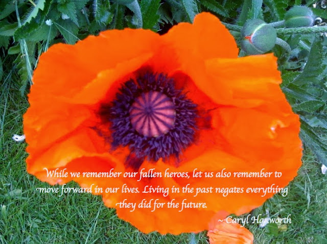 While we remember our fallen heroes, let us also remember to move forward in our lives. Living the past negates everything they did for the future. ~ Caryl Haxworth