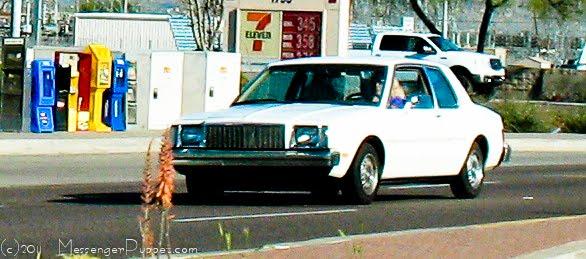 1980 Buick Skylark