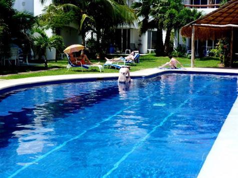Riviera Maya Real Estate News: MLS® $285,000 Big house ... - photo#11