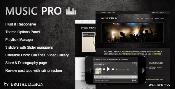 Music Pro Music Oriented WordPress Theme free