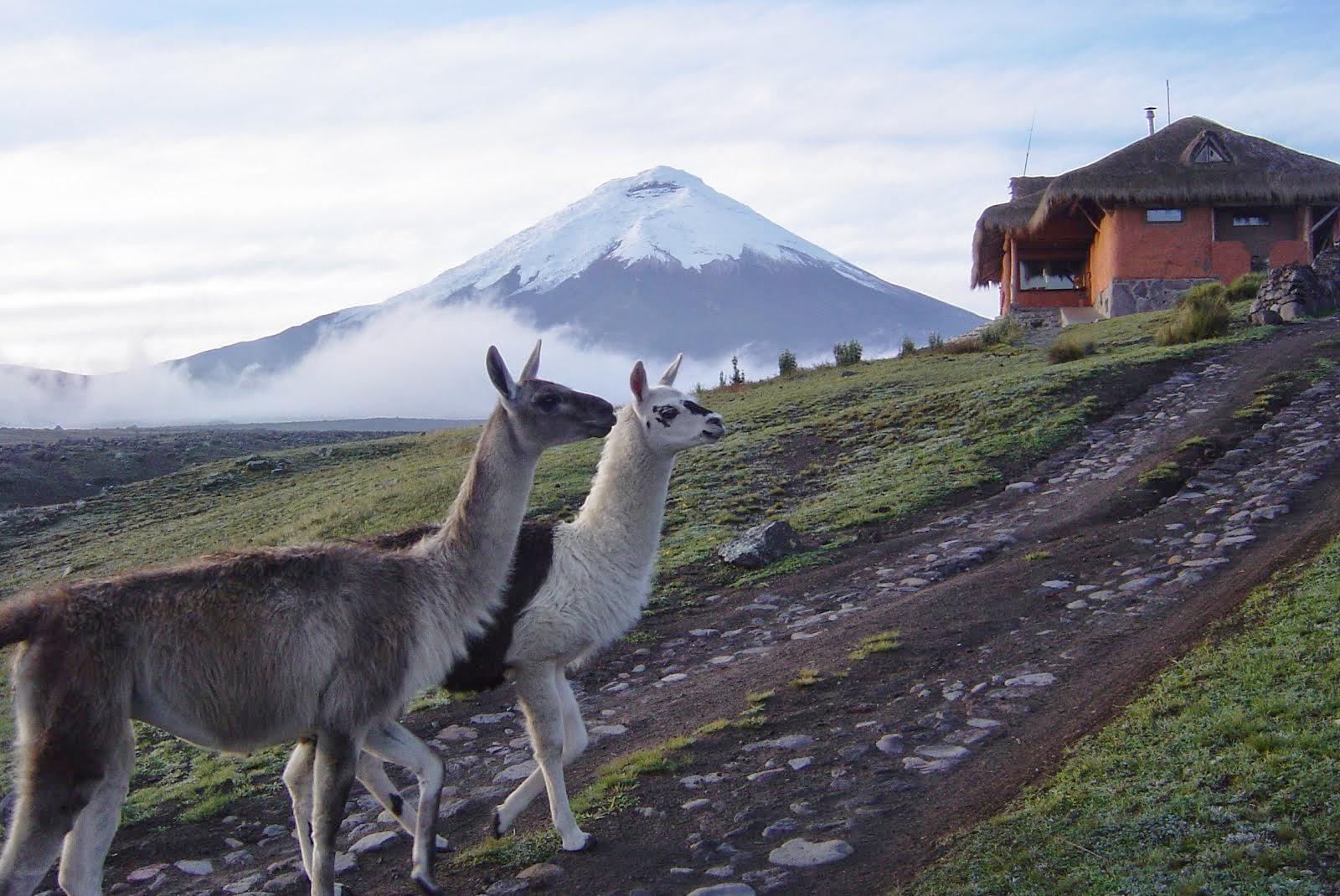 """""""Por el Camino de los Volcanes"""""""
