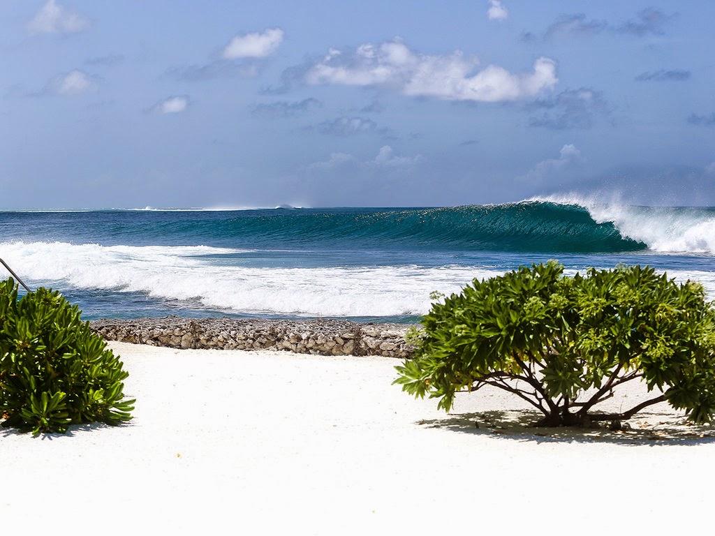 Surfing på Kandooma Maldives