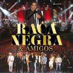 Raça Negra e Amigos Ao Vivo 2012