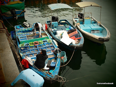 thehomefoodcook - four days of hong kong - fishing boats
