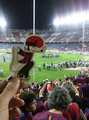 Un catganer al Calderón.
