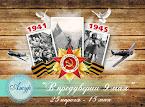 """ТЗ """"9 мая"""""""