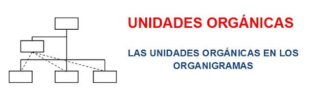 Cuales son las unidades organicas en las empresa