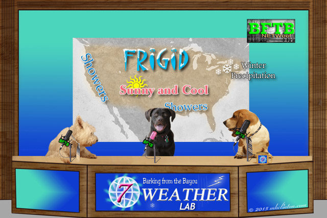 BFTB NETWoof Weather forecast screen