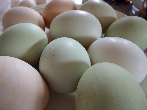 Tabla de calorías-huevos