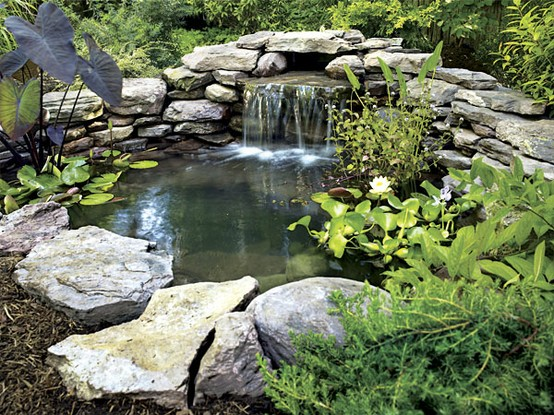 Sprinkler juice making your dream garden pond for Making a fish pond