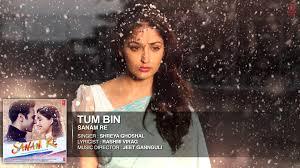 Tum Bin Son Lyrics - Sanam Re