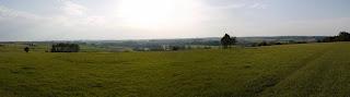 Bild 2: Panoramabild vom Weinberg bei Eining