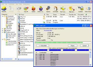 Internet Download Manager 6.11 Build 8 Final
