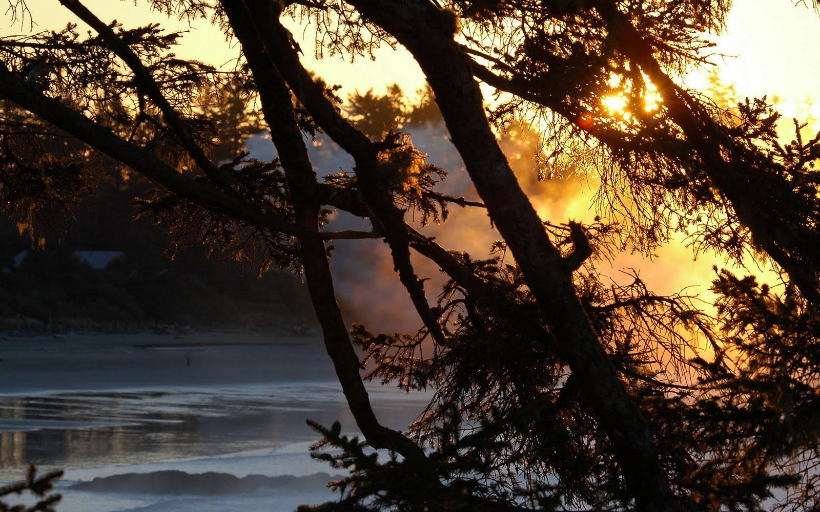 http://4.bp.blogspot.com/-pU1vd-XK7u4/TenYsU7ea2I/AAAAAAAAAvE/HbSkWwQr5EA/s1600/Nature+HD+Wallpapers+37.jpg