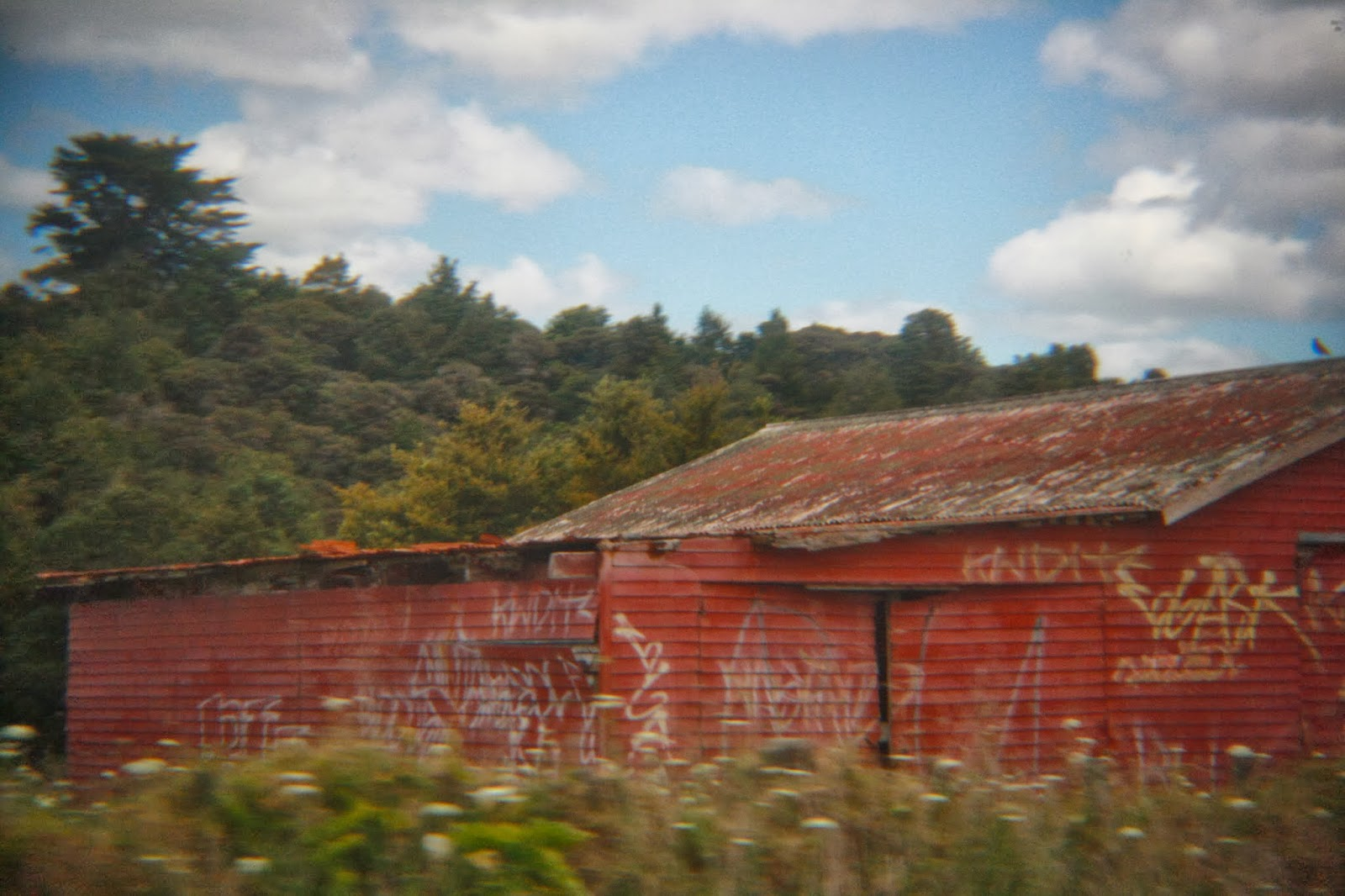 Abandoned red barn in Northland, New Zealand.