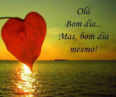Organizer Marthinhasol Manaus: Sorria e siga em frente!