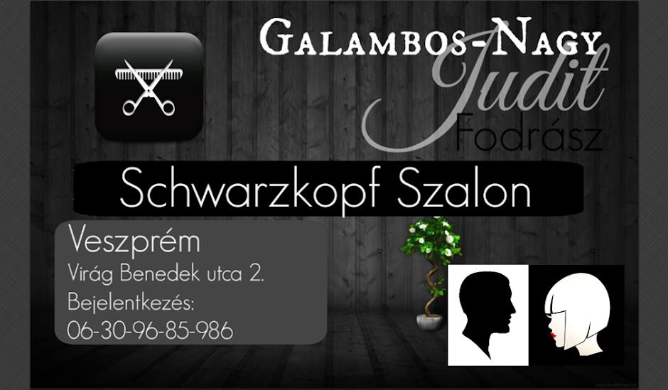 Galambos-Nagy Judit - Fodrász
