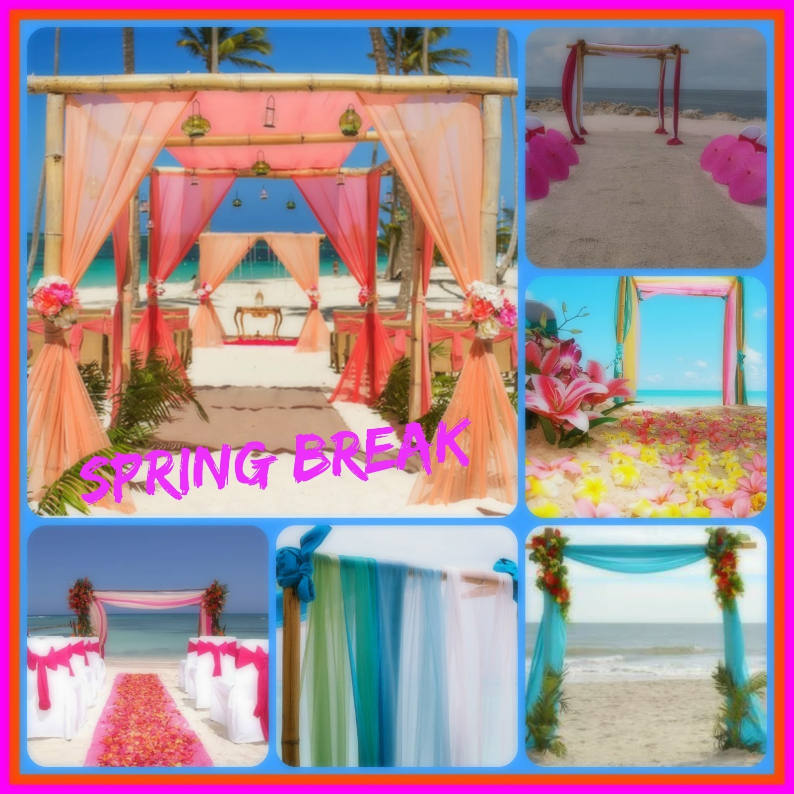 Elect Training Academy 2015 Wedding Trends Arch Draping In The