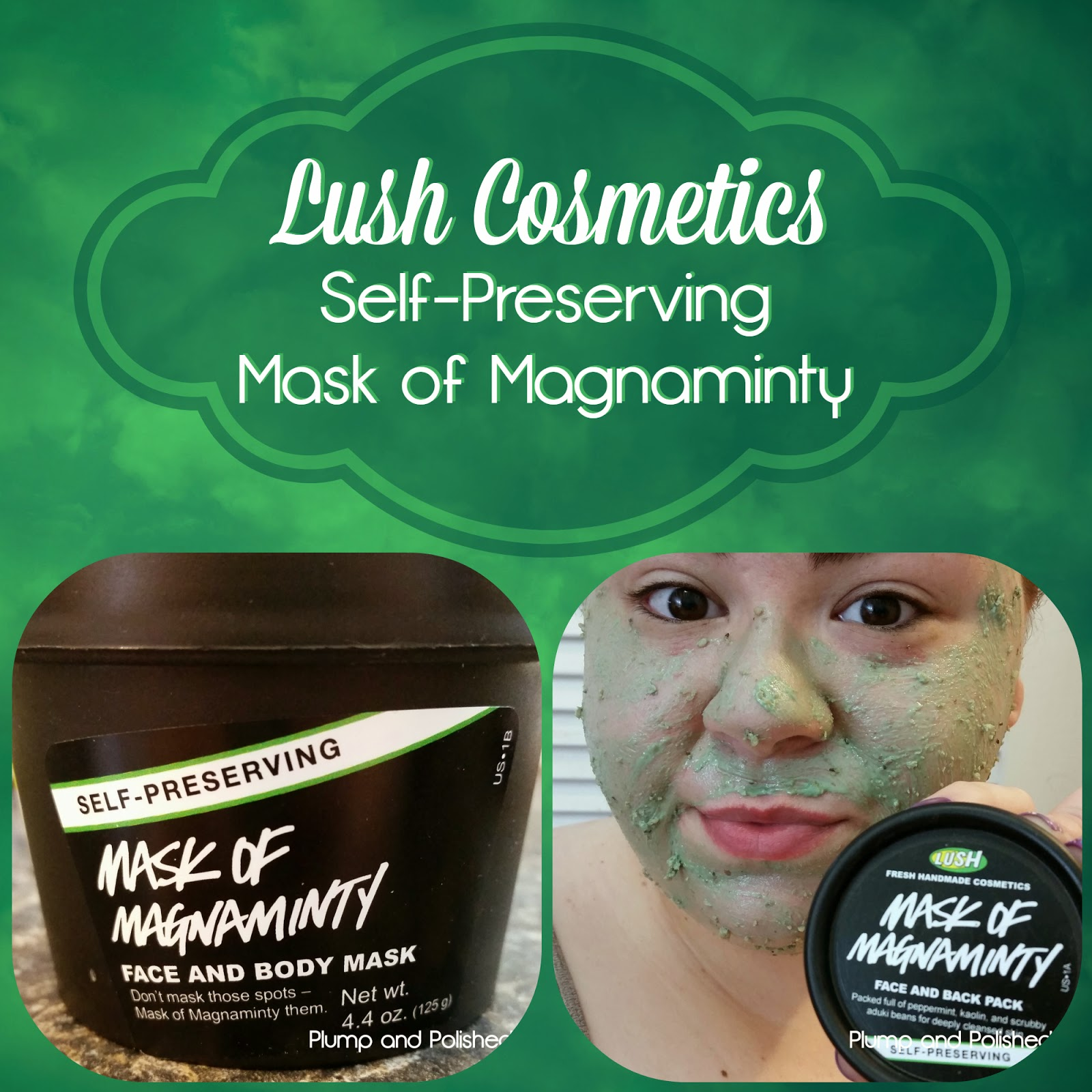 Lush Cosmetics - Self Preserving Mask of Magnaminty