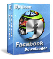 bigasoft facebook download