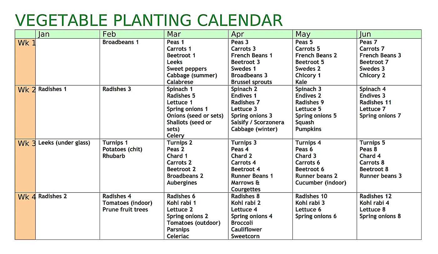 graphic about Printable Seed Starting Chart titled Allotment Heaven: Vegetable planting calendar