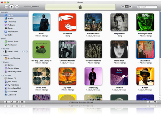 apple itunes 10.6.3  windows