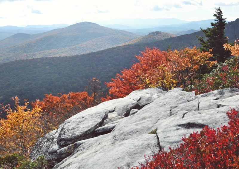 The Flying Clubhouse: Rough Ridge in October