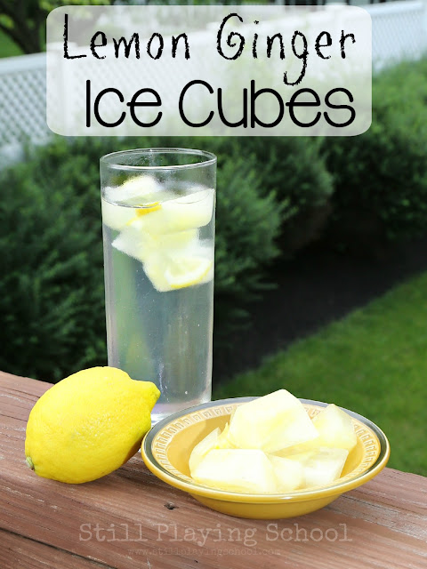 Lemon Ginger Ice Cubes for Refreshing Infused Water | Still Playing ...