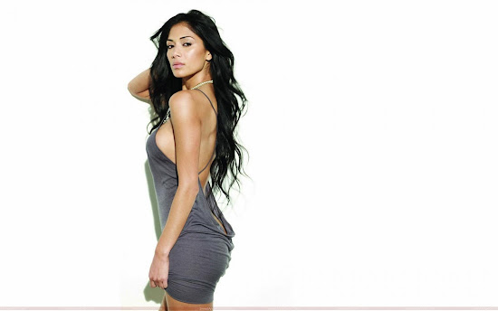 nicole_scherzinger_hot_wallpaper_in_beautiful_dress