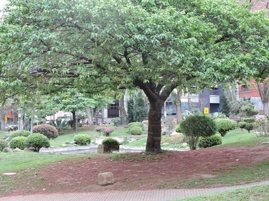 Beleza da Praça do Japão - Curitiba PR
