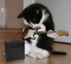 Gato Rock