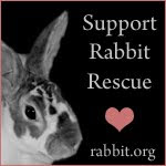 Support Rabbit Rescue