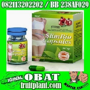 SLIM BIO HERBAL ORIGINAL 082113202202 Pelangsing badan herbal