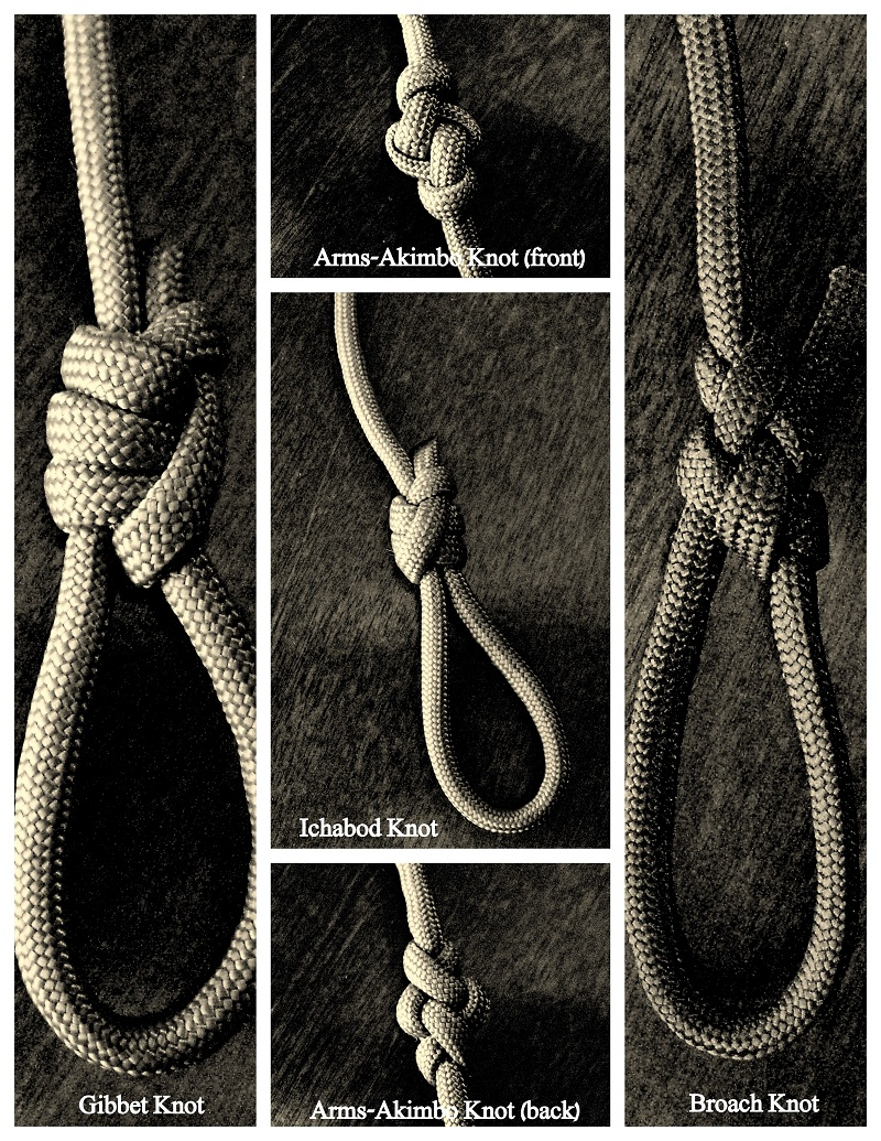 The Directory Of Knots: A Stepbystep Guide To How To Tie Bowline Basic Knots