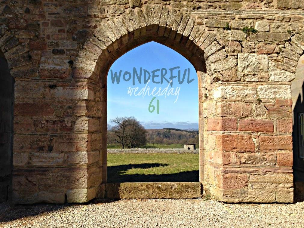 Wonderful Wednesday #61