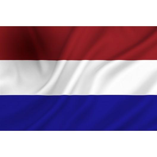 Ga naar de Nederlandstalige Versie
