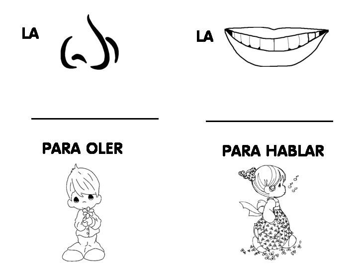 Dibujos de 5 sentidos para colorear - Imagui