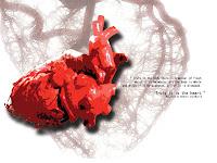 Akibat Kurang Tidur Organ Tubuh Kita Yang Hancur