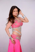 Sneha Ullal Glamorous in Pink Photo shoot-thumbnail-14