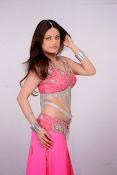 Sneha Ullal Glamorous in Pink Photo shoot-thumbnail-14