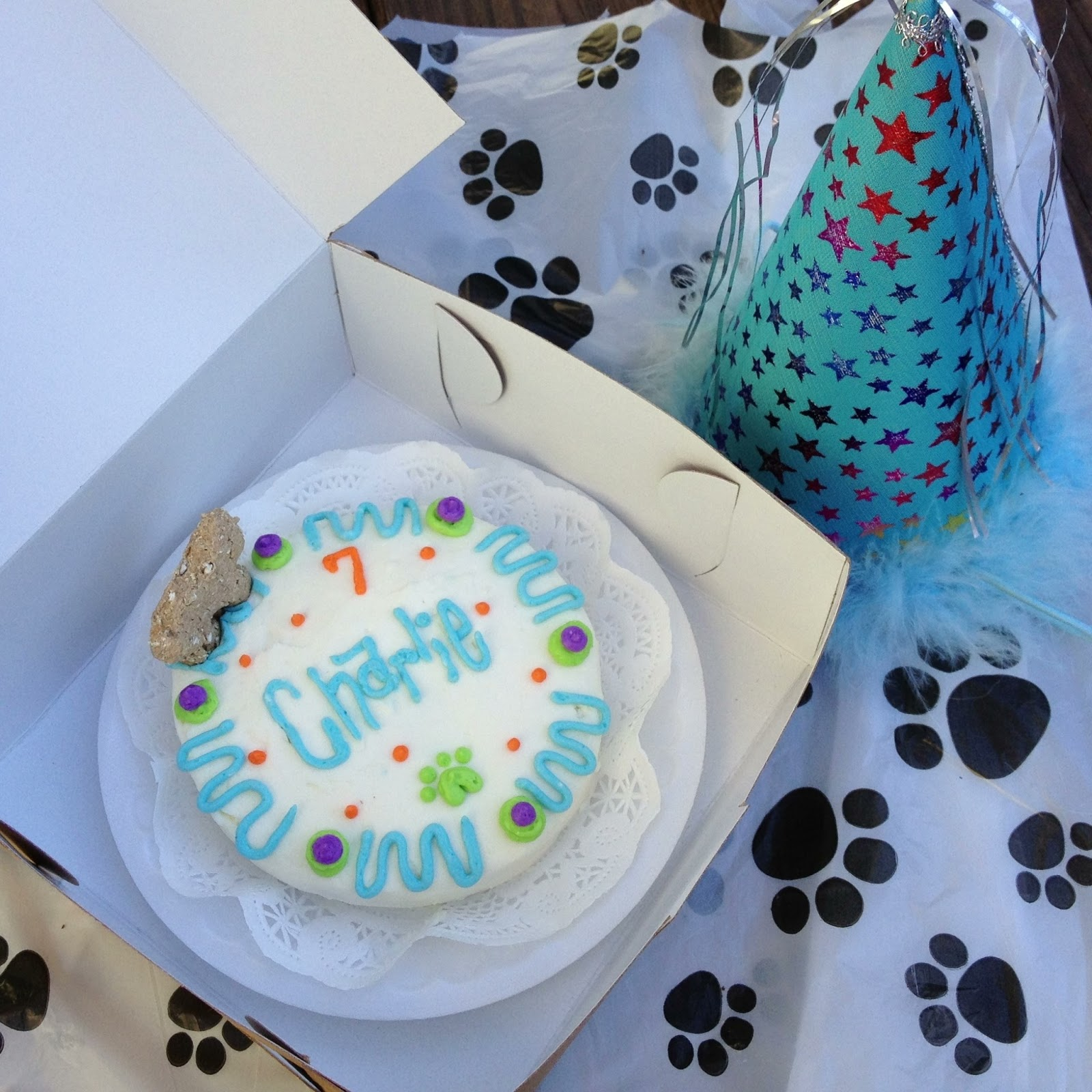 Dog Birthday Cakes New Orleans The Best Cake Of 2018