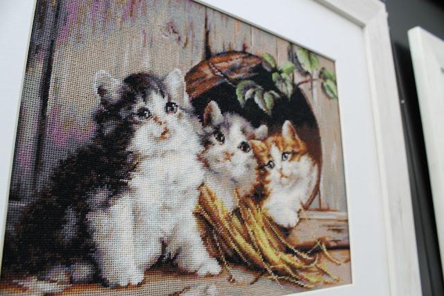 Luca-S котята