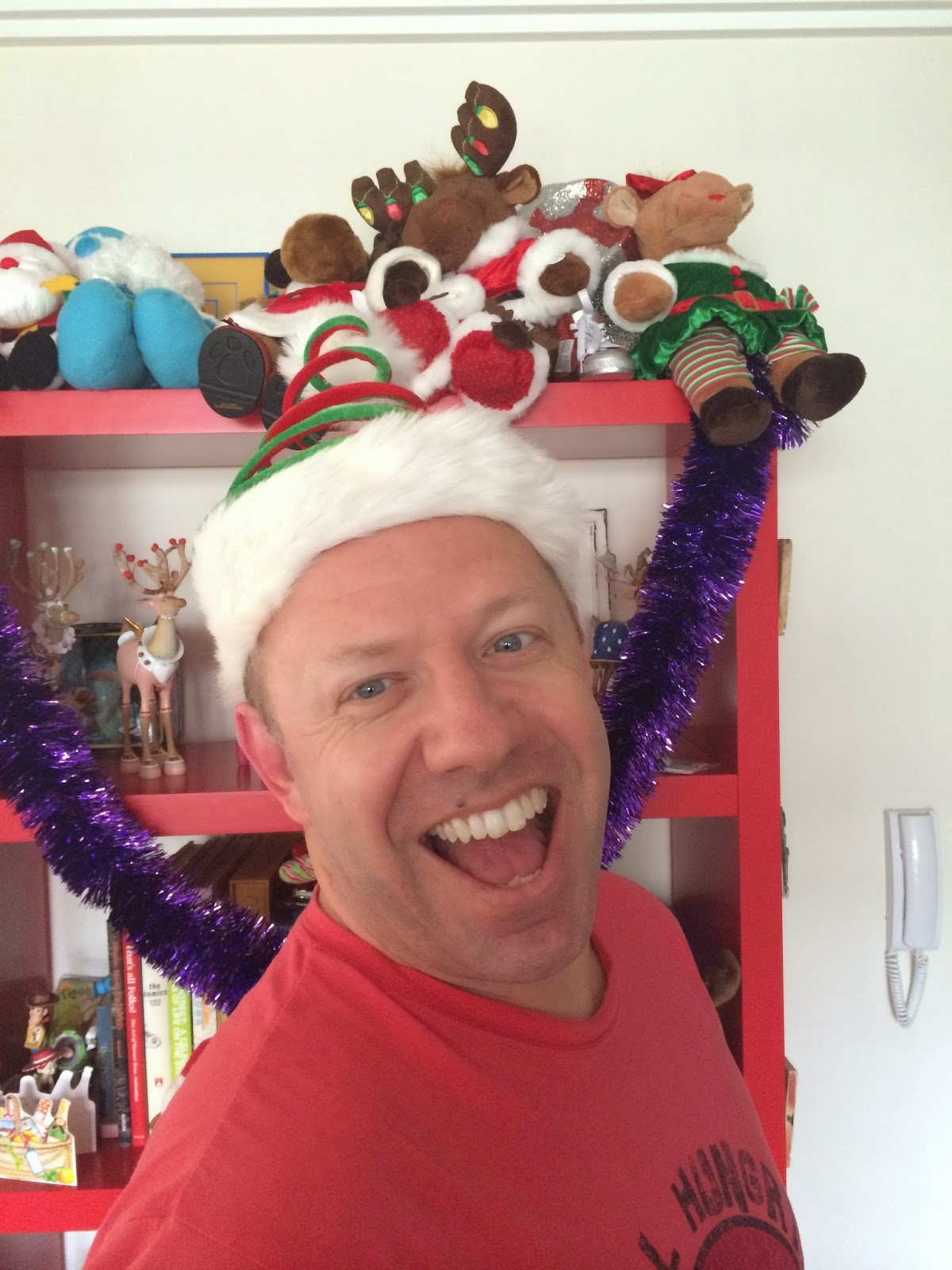 i wanted a christmas headshot for facebook and twitter and so steve and i had fun trying on all the many christmas hats in my collection - Christmas Pollyanna