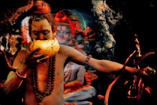 a history of practicing human and animal sacrifices The theme of human and animal sacrifice can be easily charted  in the us and between 50 and 60,000 human sacrifices a  human sacrifice, in history and.