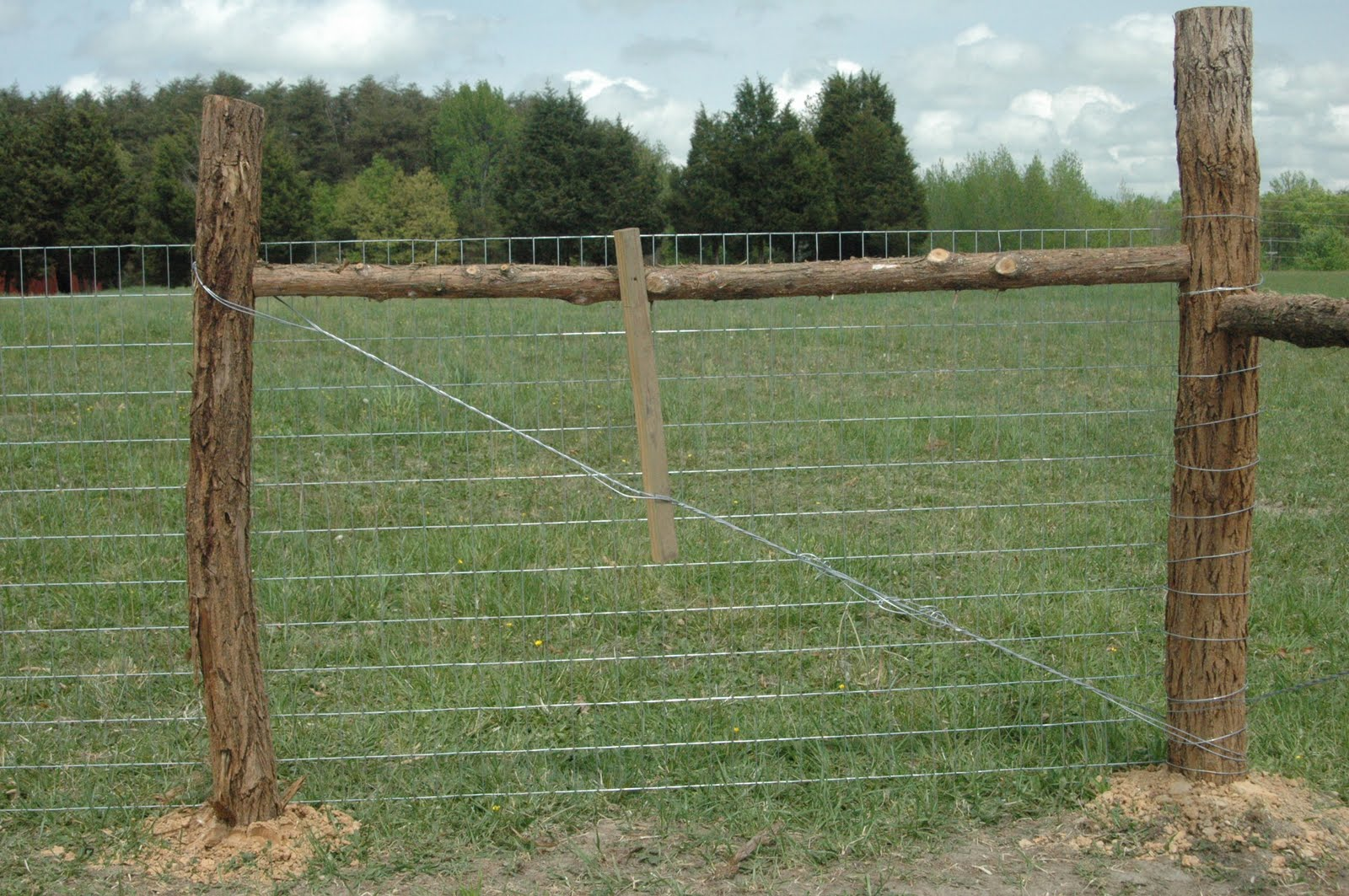 Green legacy farm fencing as in the garden acres