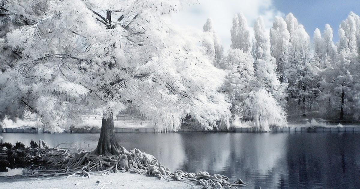 scenic winter beautiful wallpapers - photo #21